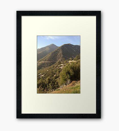 Mountain Brush Framed Print