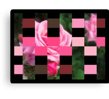 Pink Roses in Anzures 1 Art Rectangles 15 Canvas Print