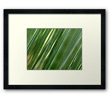 Artistic abstract of bamboo forest culms art photo print Framed Print