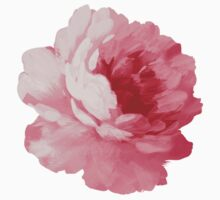 Flower sticker - beautiful peony by Olga Chetverikova