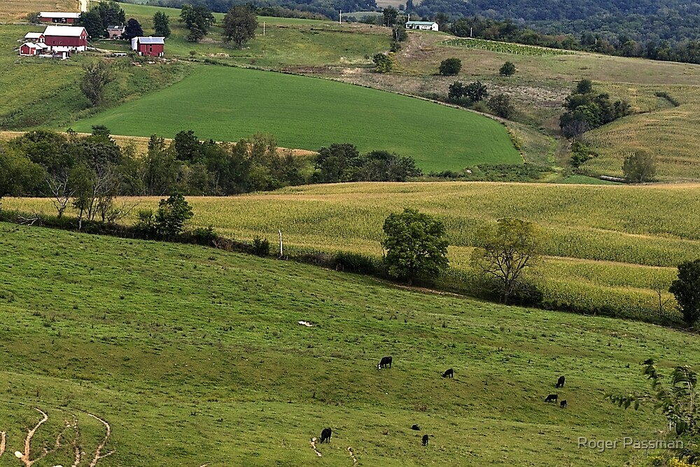 Western Illinois Farmland by Roger Passman