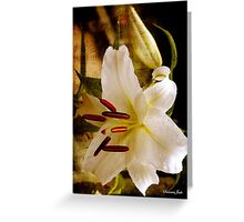 Sweet Days of Summer ~ The Lily's in Bloom Greeting Card