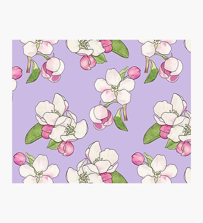 Apple Blossom Pattern Photographic Print