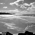 Beachscape in Black and White by Margaret Stevens
