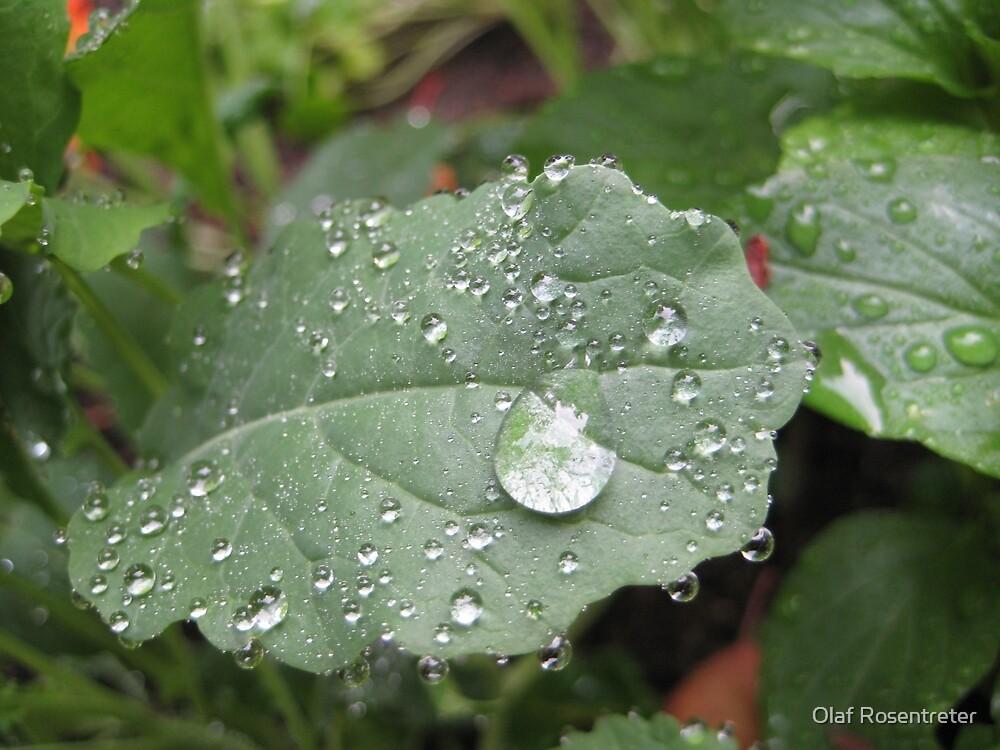 the Universe in a Rain Drop by jonolaf