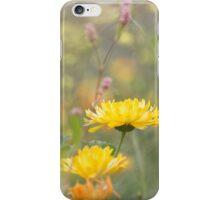 Marigold in a Cottage Garden iPhone Case/Skin