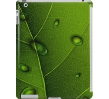 Drops On Green Leaf iPad Case / iPhone 5 Case / iPhone 4 Case  / Samsung Galaxy Cases / Pillow/ Tote Bag / Duvet iPad Case/Skin