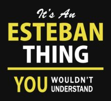 It's An ESTEBAN thing, you wouldn't understand !! by satro