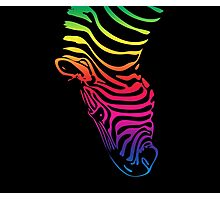 Rainbow Zebra Head Photographic Print
