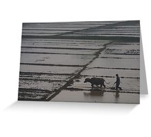 Working the Paddy Fields  Greeting Card