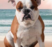 Cute Bulldog Dog Sitting on Beach Sticker