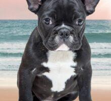 Cute French Bulldog Beach Sun Water Sticker