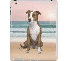 Cute Pitbull Dog Sitting on Beach with sunset iPad Case/Skin