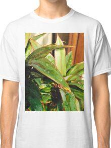 beauty of rain drops! Classic T-Shirt