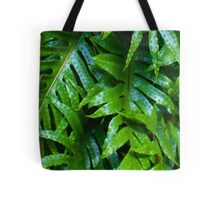 Hound's Tongue Fern Tote Bag