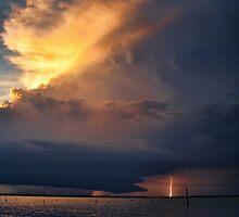 Light Up The Night by Carolyn  Fletcher