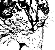 Cat Paws Sticker