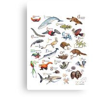 A to Z of Amazing Animals Canvas Print
