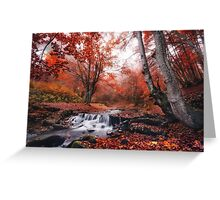 The charm of late autumn Greeting Card