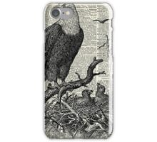 Eagles in Nest,Pen and Ink Drawing,Vintage Dictionary Book Page Art iPhone Case/Skin