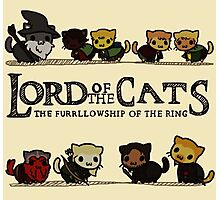 Lord Of the Cats - The Furrlowship of the Ring top edition Photographic Print