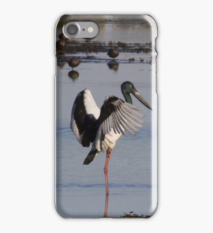 Pond Ballet iPhone Case/Skin