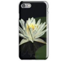 White Water Lily in a Lake iPhone Case/Skin