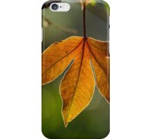 leaf backlit iPhone Case/Skin