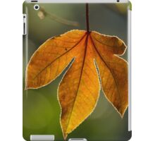 leaf backlit iPad Case/Skin