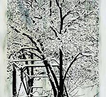 A Winter's Day by TRobinP