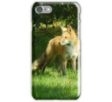 Bushy Tail iPhone Case/Skin