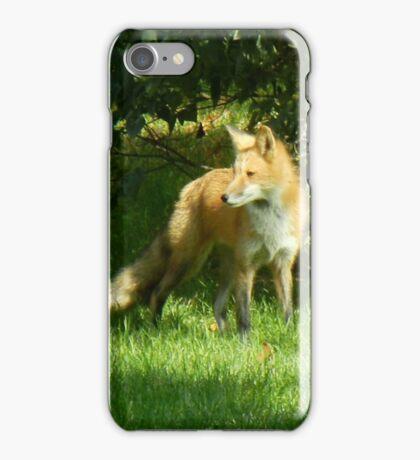 Bushy Tail iPhone Case/Skin