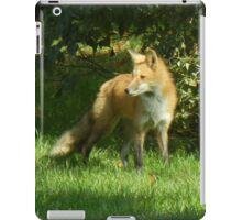 Bushy Tail iPad Case/Skin