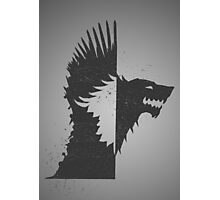 House Stark Photographic Print