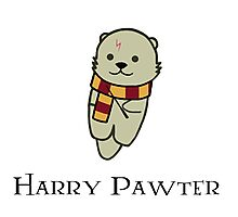 Harry Pawter Photographic Print