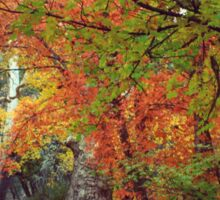 Foliage Sticker