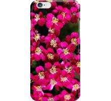 Little Pink Flowers iPhone Case/Skin
