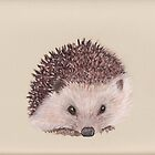 The Hedgehog by MagsWilliamson