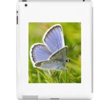 Silver Studded Blue Butterfly iPad Case/Skin
