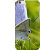 Silver Studded Blue Butterfly iPhone Case/Skin