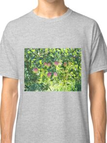 Apples On The Tree Classic T-Shirt