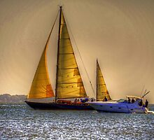 Sailing in the Charleston Harbour by imagetj