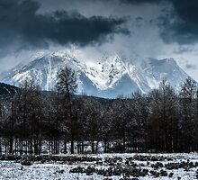 Storm over the Tetons by TomGreenPhotos