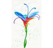 Fey Flower Photographic Print