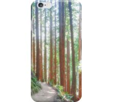 Muir Woods Trail iPhone Case/Skin