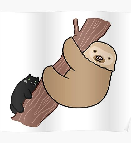 Black Cat and Two Toed Sloth Poster