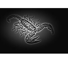 Scorpion - Heavy Metal II Photographic Print