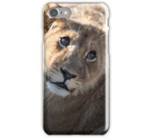 Lion Cub iPhone Case/Skin