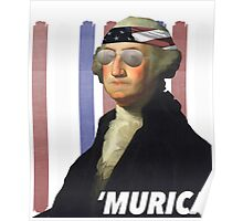 George Washington President of Murica Poster