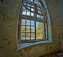 Window to the Gardens of Eden by Piotr Tyminski